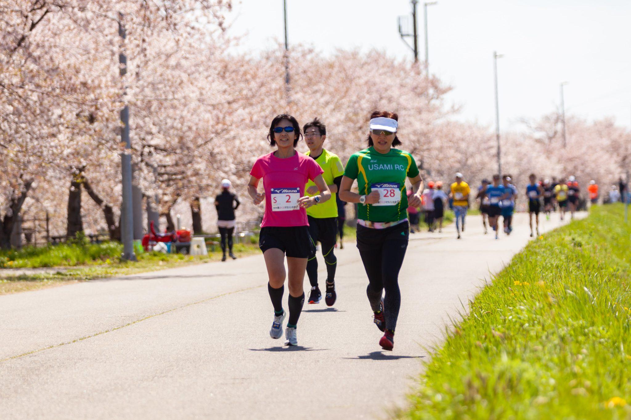燕さくらマラソン大会2019 ギャラリー